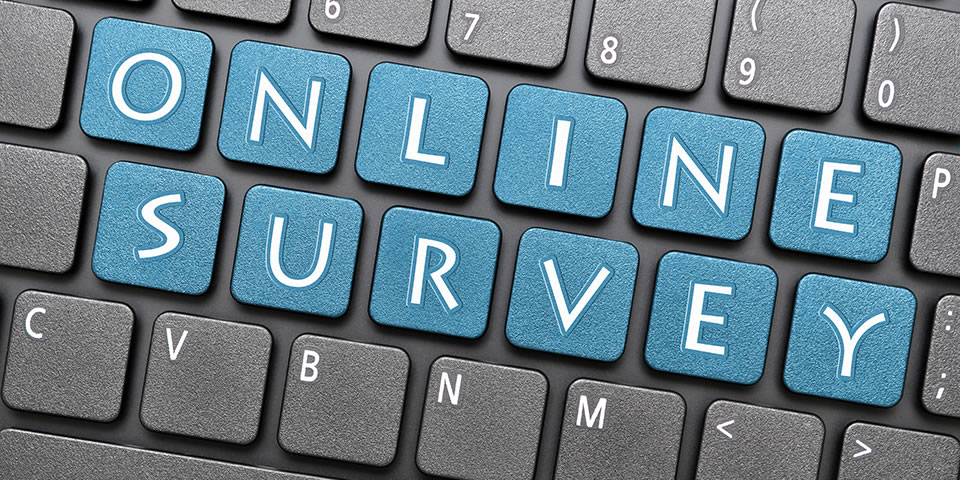 survey picture
